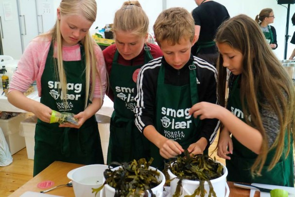 Fig. 5 Schoolchildren at a folk festival in Denmark preparing bladder wrack for use in a seaweed salad (Photo: Marianne Løth Pedersen, Nordea-fonden)